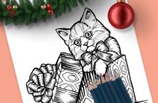 Christmas Kitten Drawing